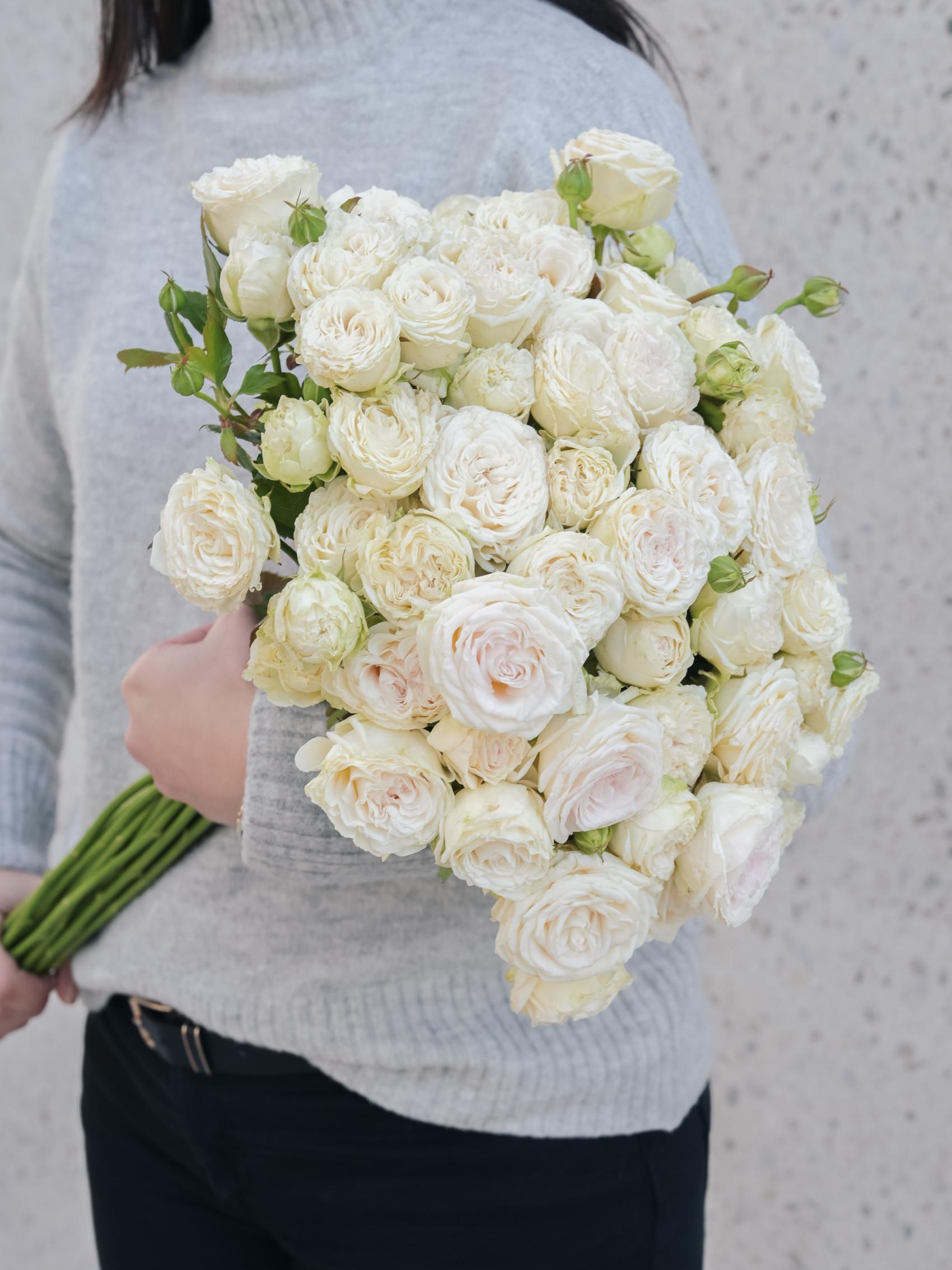 Gardenia_januar_feed (74 of 205)
